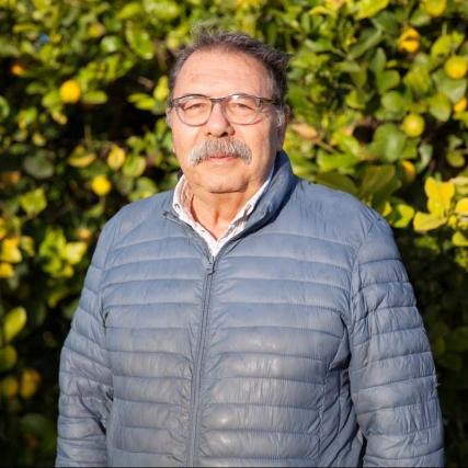 Azienda Agricola ANTONINO BONCORDO
